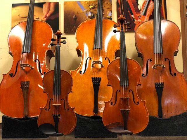 バイオリン・ビオラ・チェロの違い